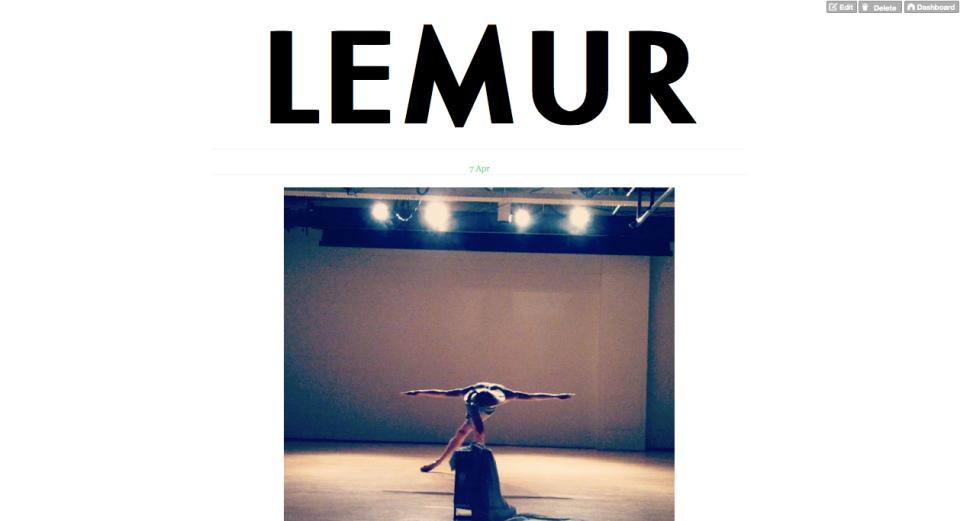 Lemur Tumblr 2
